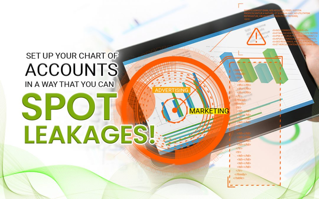 Set Up Your Chart of Accounts in a Way That You Can Spot Leakages!